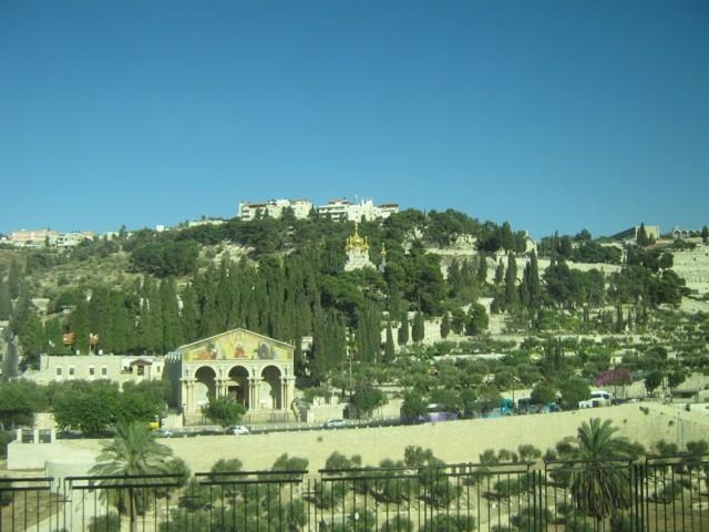 Jerusalem: Blick auf den Garten Gethsemane